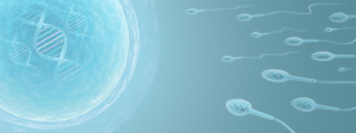 sperm donation greece